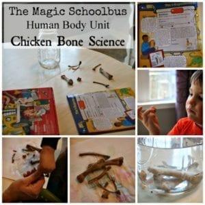 chicken bone science
