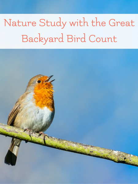 nature study with the great backyard bird count