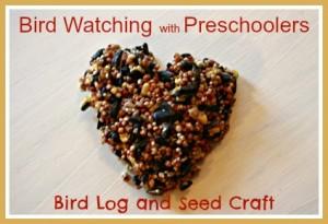 bird watching log and craft preschool
