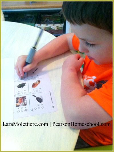 pearson homeschool plaid phonics review 3