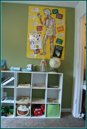 storage and shelving in homeschool room