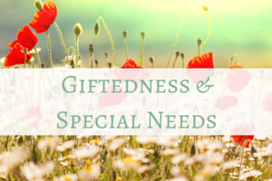 gifted with special needs homeschooling