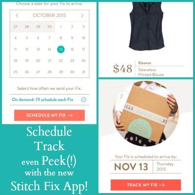 stitch fix app information