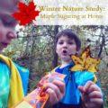 My Charlotte Mason Adventure Part 1 >> Nutcracker Unit Study and 3 Part Cards - Everyday Graces