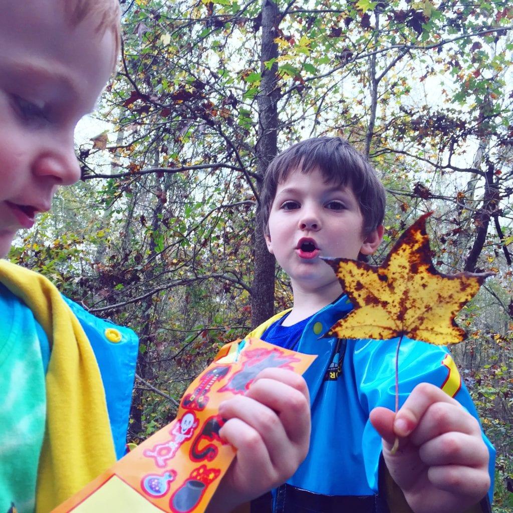 nature walks homeschool