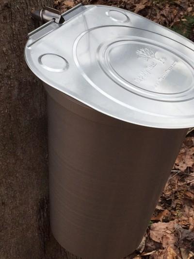 sugaring bucket