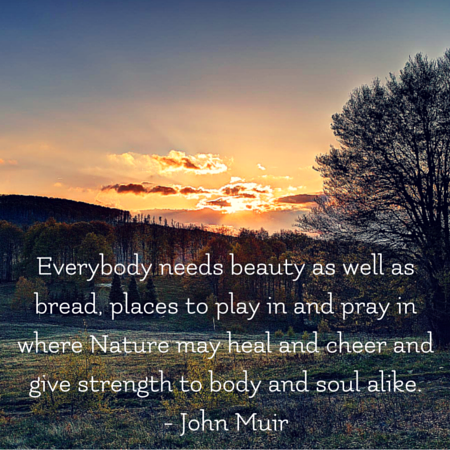 Everybody needs beauty as well as bread, places to play in and pray in where Nature may heal and cheer and give strength to body and soul alike. _ John Muir