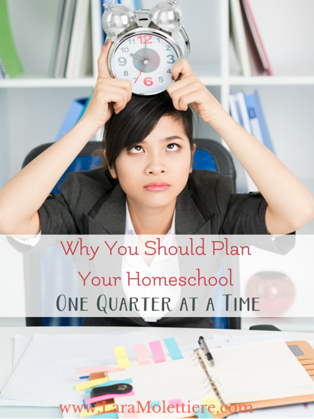 """Use quarterly planning to take the stress of out planning your homeschool year. How? One of many reasons: You have wiggle room to move ahead or review concepts as needed in your next quarter after reviewing what was accomplished in the quarter you are wrapping up. This allows for you to keep each subject aligned with each child's specific needs without the pressure of feeling """"behind"""" or the worry of getting """"too far ahead"""". Find out how we plan quarterly and see our Charlotte Mason printable planner."""