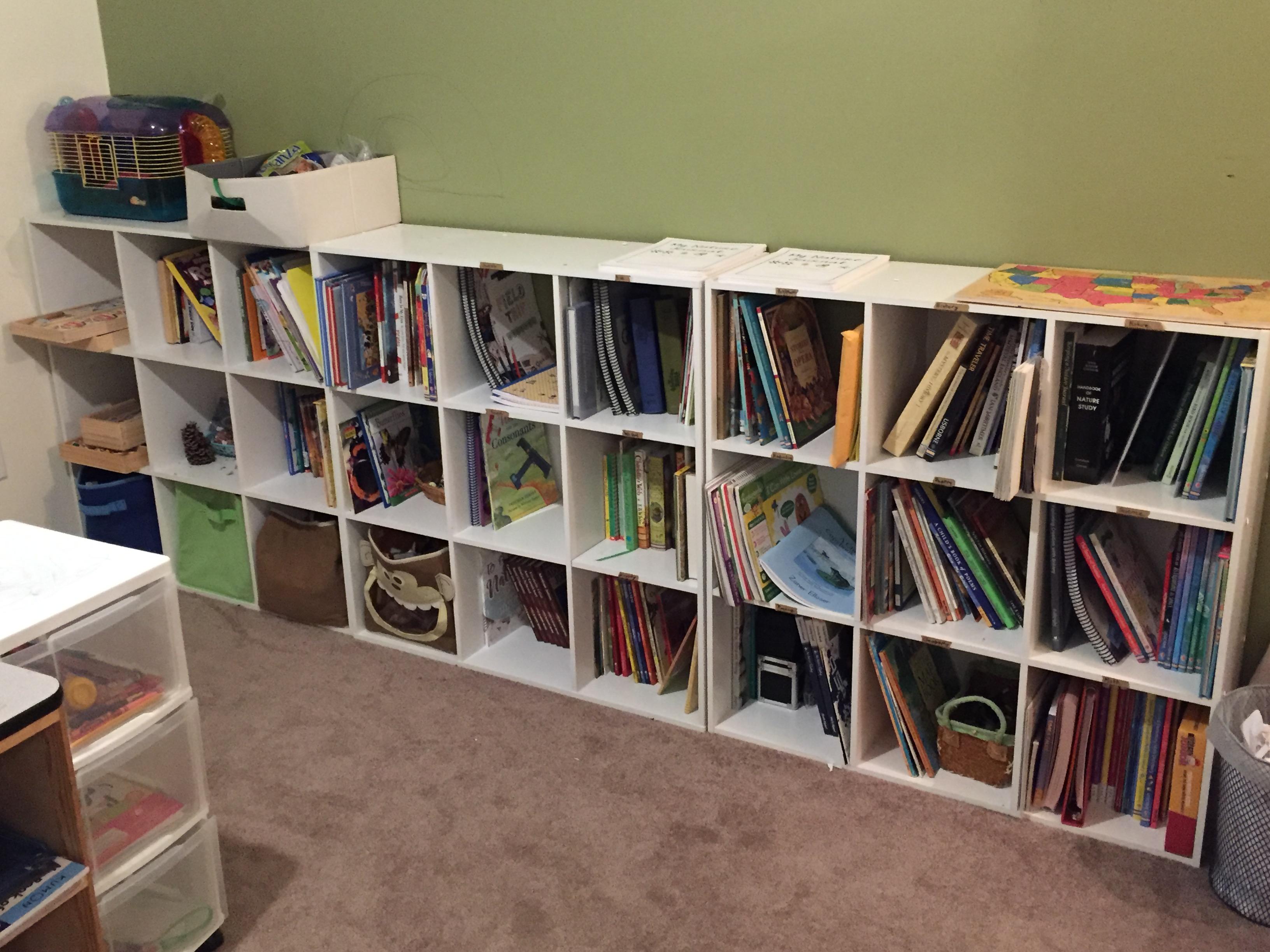 homeschool room shelving idea