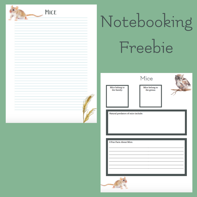 mice note booking page