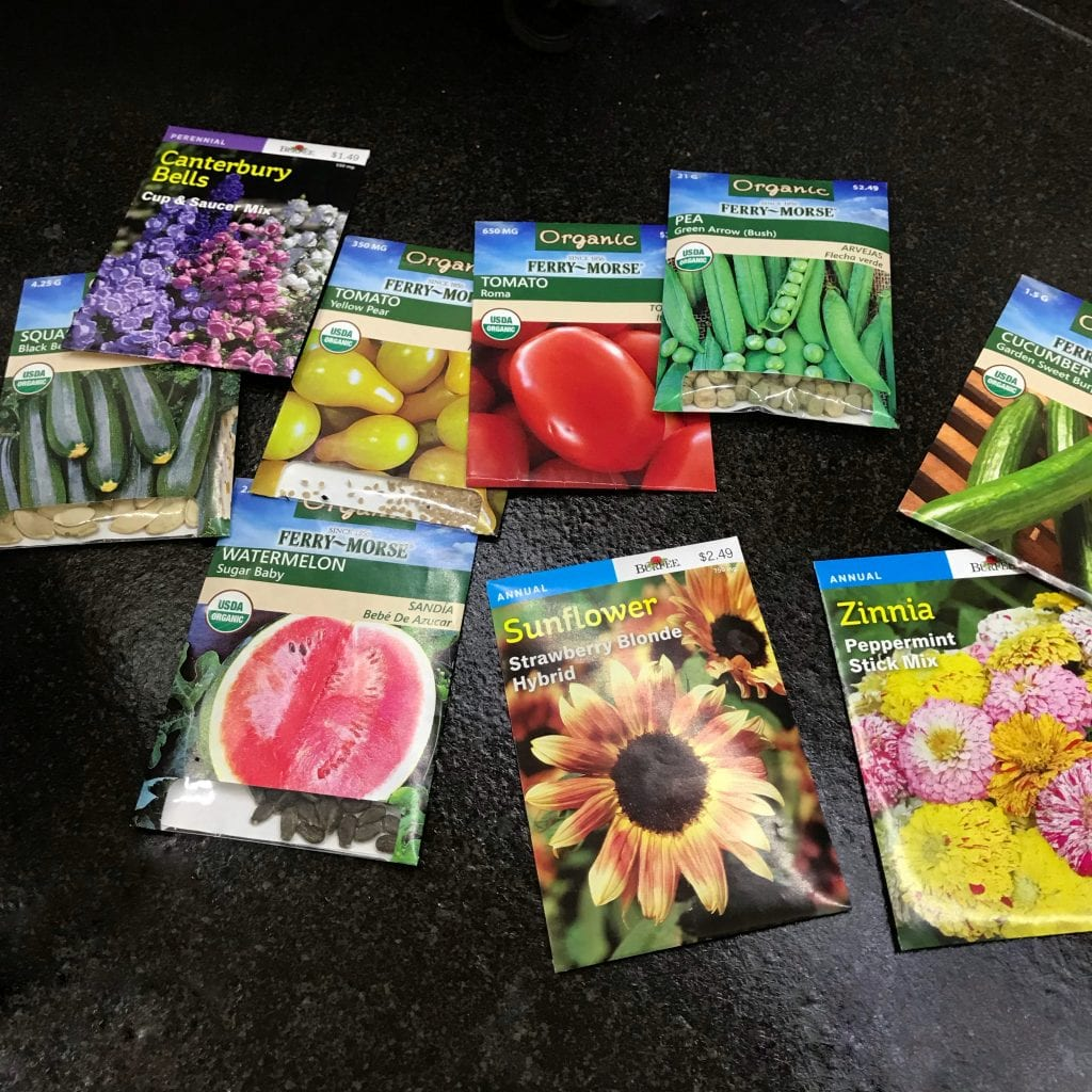 planting seeds in a homeschool garden