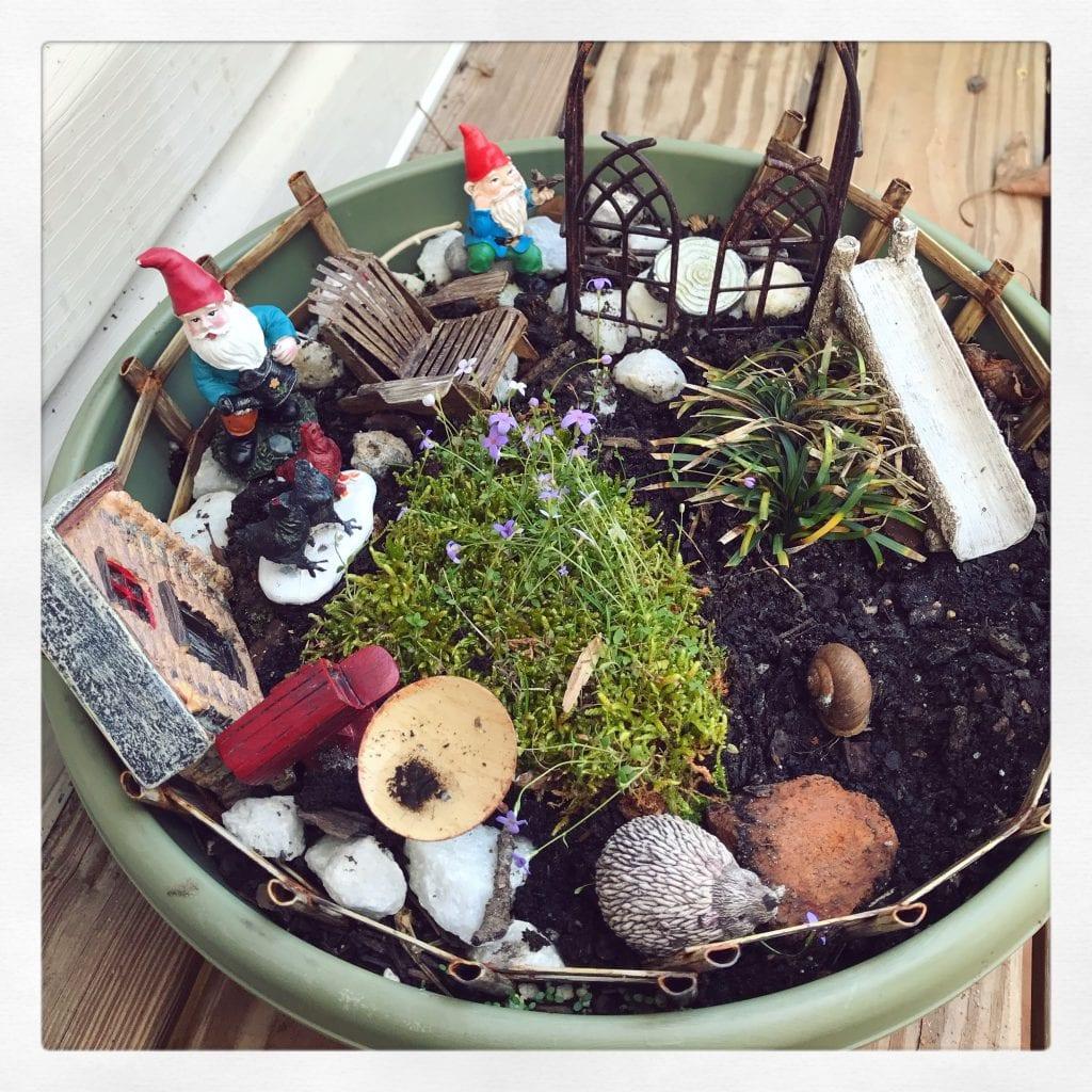 gnome garden for homeschool