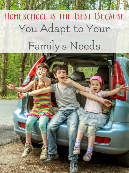 homeschool meets family needs