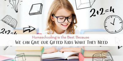 Homeschooling is the Best Because We Can Give our Gifted Kids What They Need