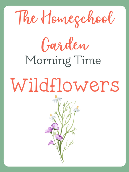 homeschool morning time resources