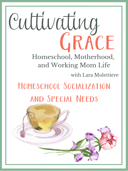 homeschool socialization and special needs
