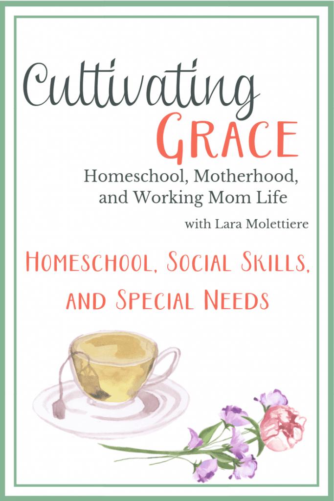 Homeschool, Social Skills, and Special Needs